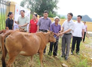 Các đồng chí lãnh đạo tỉnh và T.Ư Hội CTĐ, Báo Điện tử Đảng Công sản Việt Nam, Hội CTĐ tỉnh và chính quyền địa phương trao bò giống cho hộ nghèo tại xã Pù Bin (Mai Châu).