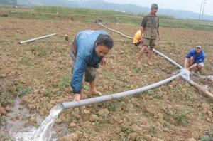 Nông dân xã Vũ Lâm (Lạc Sơn) nỗ lực bơm nước chống hạn.