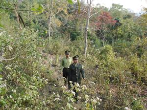 Cán bộ Hạt kiểm lâm huyện Kim Bôi bám sát địa bàn, cơ sở, tham mưu cho chính quyền thực hiện tốt trách nhiệm quản lý Nhà nước về rừng và đất lâm nghiệp.