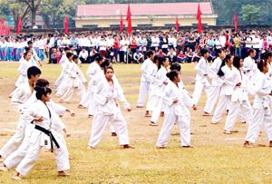 Môn võ karatedo ở huyện Tân Lạc  ngày càng thu hút  đông đảo  thanh - thiếu niên  tham gia.