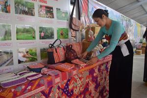 Chị Vì Thị Oanh tự hào giới thiệu với những sản phẩm độc đáo của HTX dệt thổ cẩm Chiềng Châu khi tham gia triển lãm các sản phẩm nổi bật của ngành NN&PTNT tỉnh Hòa Bình năm 2015.
