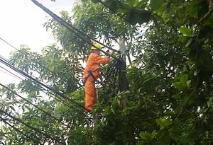 Ngành điện Lạc Thuỷ thường xuyên kiểm tra đường dây, loại bỏ những hư hỏng để đảm bảo an toàn cho nhân dân.