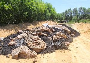Khu vực rừng tràm nơi phát hiện 100 tấn chất thải tự chôn lấp của Formosa
