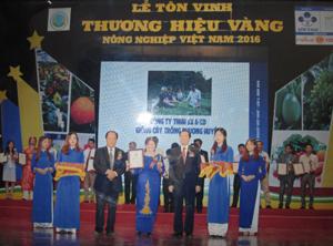 Đại diện công ty TNHH SX & KD Phương Huyền nhận giải thưởng Thương hiệu Vàng nông nghiệp Việt Nam năm 2016.