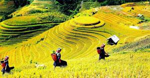 """Slogan chung được sử dụng trong Năm du lịch quốc gia 2017 Lào Cai – Tây Bắc là """"Trải nghiệm những nẻo đường nguyên sơ"""" nhằm mời gọi du khách khám phá vẻ đẹp hoang sơ, kỳ vỹ của thiên nhiên, trải nghiệm cuộc sống chân chất, đậm đà bản sắc dân tộc vùng núi cao Tây Bắc"""