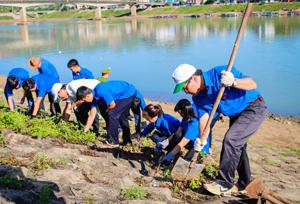 Các đại biểu tham gia phát quang bụi rậm, dọn vệ sinh dọc bờ kè Sông Đà.