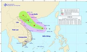 Vị trí và đường đi của áp thấp nhiệt đới
