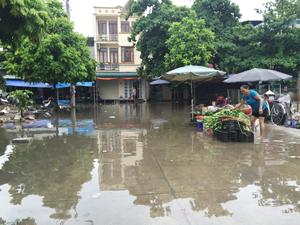 Nước mưa và rác thải gây ô nhiễm tại đường Huỳnh Thúc Kháng, phường Phương Lâm (TP Hoà Bình).
