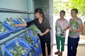 Hiện nay, huyện Lương Sơn là địa phương duy nhất trong tỉnh xây dựng được cửa hàng giới thiệu và bán các loại nông sản  đảm bảo VSATTP, đáp ứng nhu cầu sử dụng nông sản sạch của người tiêu dùng.