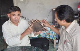 Anh Nguyễn Đình Hoa đang giới thiệu nấm lim xanh tìm được trong rừng để sắc uống chữa bệnh hiểm nghèo với lãnh đạo Sở Y tế tỉnh Quảng Nam.