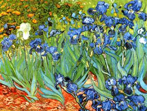 """Bức """"Irises"""" (Hoa Cầu Vồng) của họa sĩ Vincent van Gogh, có giá 53 triệu USD."""