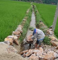Nông dân xã  An Lạc củng cố hệ thống kênh mương nội đồng đảm bảo  nguồn nước tưới  ổn định cho diện tích lúa vụ mùa.