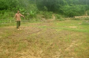 0,93 ha lúa vụ chiêm - xuân năm 2012 của nhân dân xóm Mỗ 2 đã bị đất đá vùi lấp, mất trắng hoàn toàn.