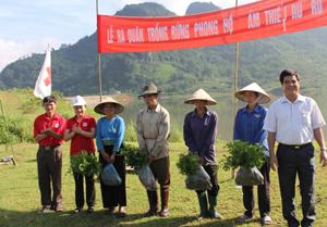 Bà Nguyễn Thị Đào, Chủ tịch Hội CTĐ tỉnh trao cây giống cho các hộ gia đình tham gia trồng rừng thuộc dự án.
