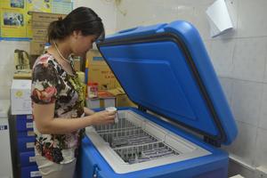 Cán bộ Trung tâm YTDP tỉnh thực hiện bảo quản vắc xin viêm gan B trong dây chuyền lạnh.