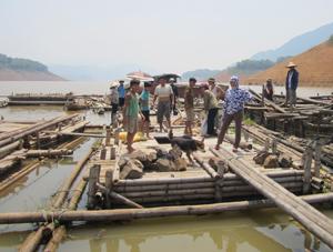 Sau thiệt hại, hàng chục hộ nuôi cá lồng xóm Bãi Sang, xã Phúc Sạn (Mai Châu) khó khăn về vốn đầu tư cho nghề nuôi trồng thủy sản.