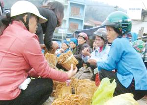 Măng rừng - sản vật của núi rừng được nhiều người lựa chọn mua về làm quà  mỗi dịp lên với các xã vùng cao huyện Mai Châu (Hòa Bình). Ảnh PV