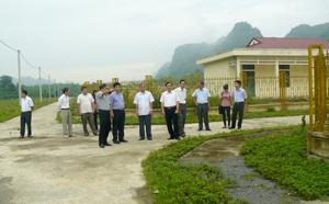 Khu tái định cư cho 50 hộ dân xã Tân Mai, Phúc Sạn huyện Mai Châu tại đội 4, xã Đồng Tâm, huyện Lạc Thuỷ.