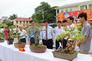 Đồng chí Trần Đăng Ninh, Phó Bí thư TT Tỉnh ủy cùng các đại biểu thăm quan sản phẩm sinh vật cảnh tại triển lãm.