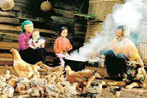 Hạnh phúc tuổi già của Nguyễn Văn Thương, tác phẩm đoạt giải nhất.