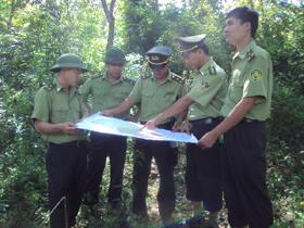 Lực lượng kiểm lâm BQL Khu Bảo tồn thiên nhiên Thượng Tiến triển khai phương án bảo vệ rừng.