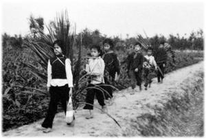 Học sinh vẫn tiếp tục đến trường dưới bom đạn - Ảnh Wilfred Burchett chụp năm 1966