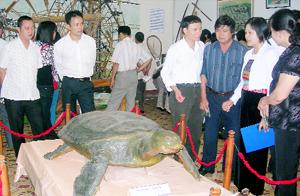 Đông đảo cán bộ, nhân dân tỉnh Hưng Yên thăm quan gian trưng bày hiện vật của Bảo tàng Hòa Bình tại thành phố Hưng Yên.