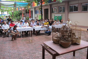 Hội thi Họa Mi chiến tỉnh Hòa Bình lần thứ 7 thu hút đông đảo người ưa chuộng tham gia.