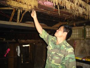 Anh Tường sưu tập nhiều giống lúa để lai tạo giống mới cho bà con.