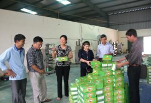 Đoàn kiểm tra chuyên ngành kiểm tra xưởng sản xuất tại cơ sở sang chai đóng gói hóa chất phục vụ nông nghiệp Nam Thịnh, xóm Cột Bài, xã Trường Sơn (Lương Sơn).