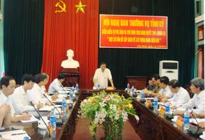 Đồng chí Hoàng Việt Cường, Bí thư Tỉnh ủy phát biểu khai mạc hội nghị.