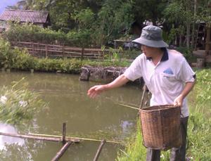 Kinh tế  gia đình thương binh Hà Công Tím khá giả nhờ  mô hình kinh tế VAC kết hợp làm du lịch cộng đồng.