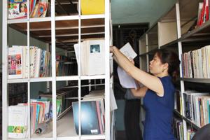 Thư viện huyện Lạc Sơn phân loại hồi cố sách theo chuẩn phân loại mới, tuy nhiên, hiện nay đã không duy trì và tiếp tục xử lý sách mới.