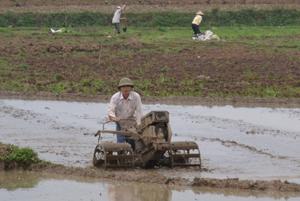 Người nông dân cần đọc kỹ hướng dẫn sử dụng trước khi vận hành máy nông nghiệp. Ảnh chụp tại xã Vĩnh Đồng (Kim Bôi).