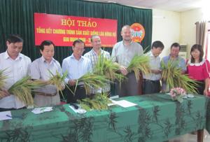 Đại biểu Trung ương, tỉnh, huyện và nhà tài trợ OXFAM Đoàn kết Bỉ đánh giá chất lượng giống lúa nông hộ.