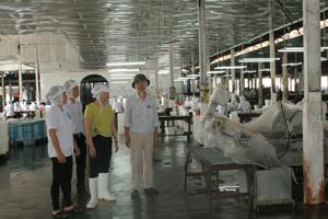 Đoàn kiểm tra Sở LĐ-TB&XH kiểm tra thực tế công tác ATVSLĐ tại Công ty TNHH Pacific.